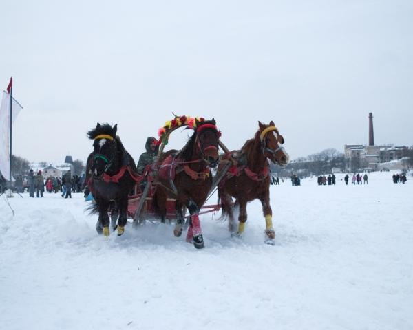 Тройка лошадей на реке Великой