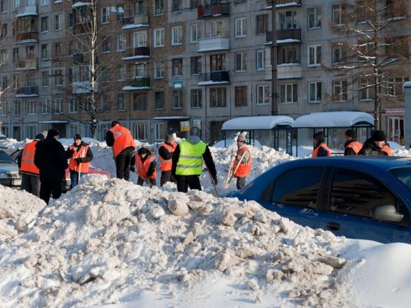 Дворники убирают улицы Питера