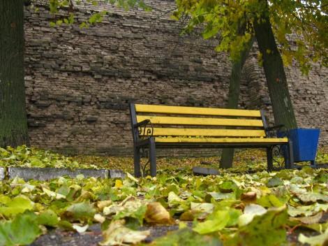 Псков. Скамейка у крепостной стены на набережной.
