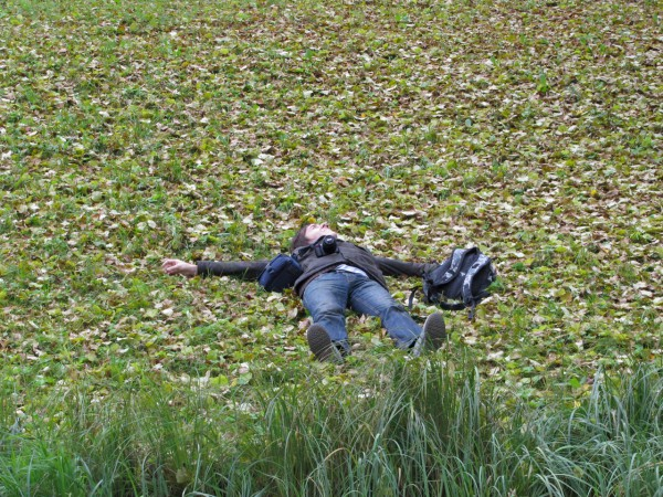 Лежу на листьях