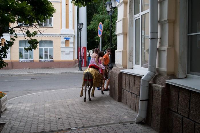 Альтернативный транспорт