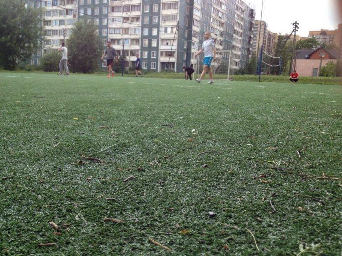 Футбольное поле в Девяткино