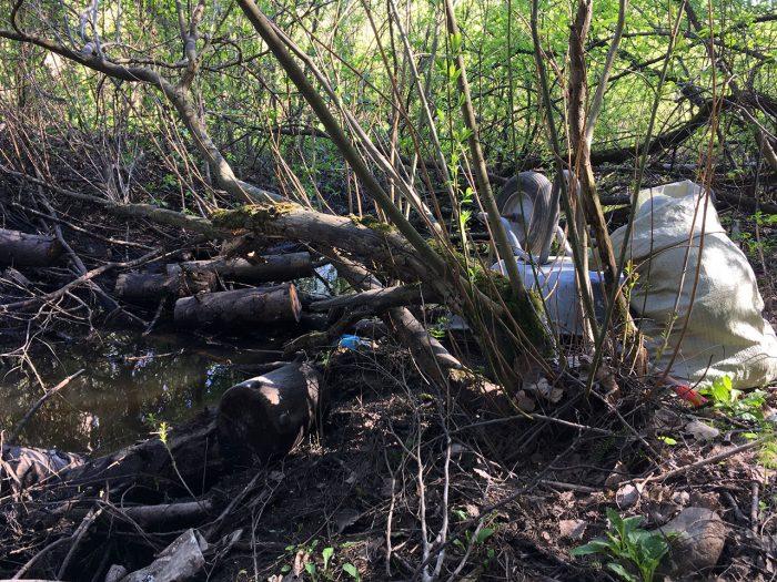 Затор из мусора в Капральевом ручье