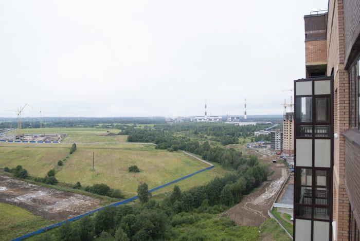 Старое фото парка охтинская долина в Новом Девяткино