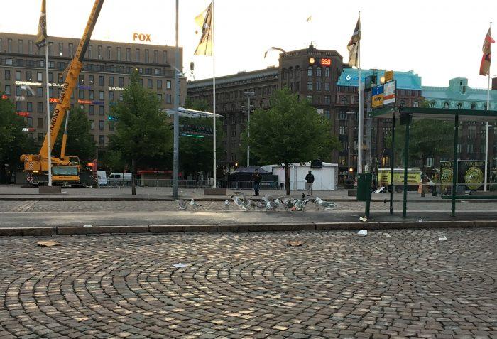 Чайки в Хельсинки
