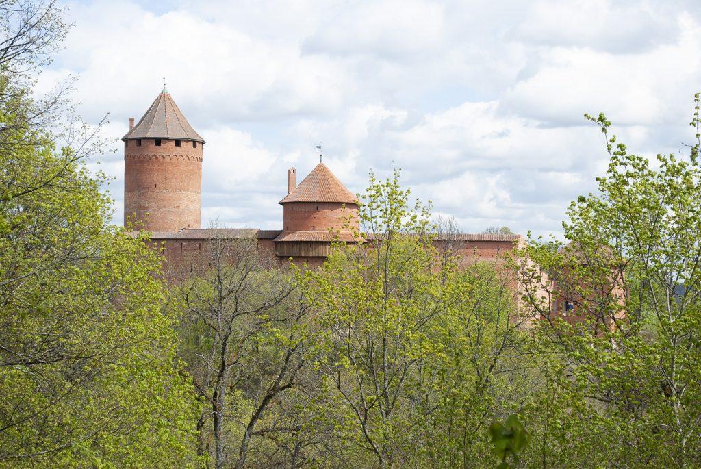 турайдский замок из леса