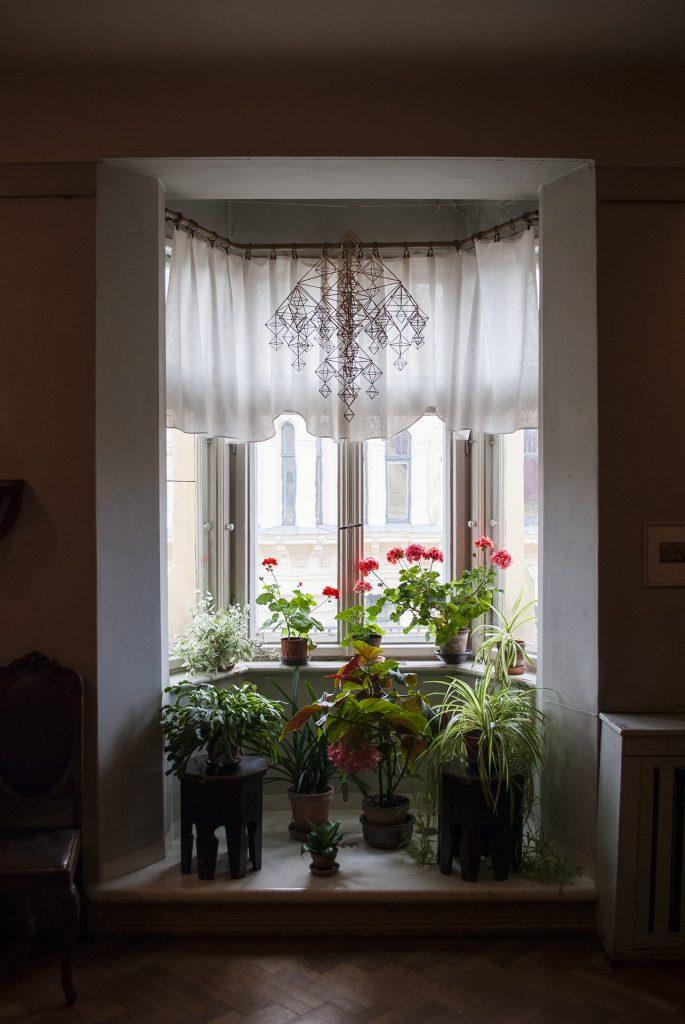 Цветы на окне музея Яна Розенталя в Риге