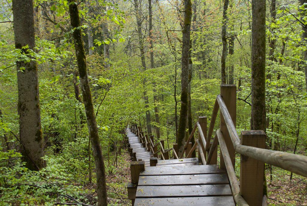 Лестница к реке от парка скульптур у замка в Турайде