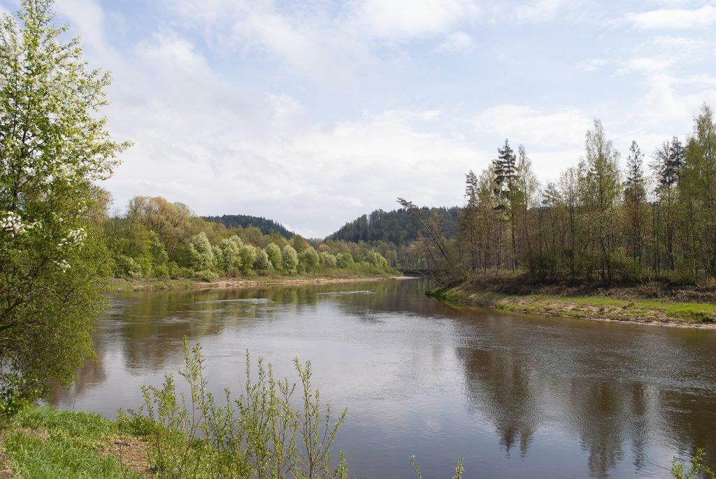 Изгиб реки Гауя у замка в Турайде