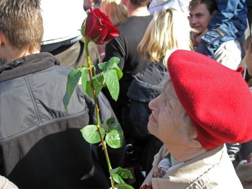 Бабушка с розой